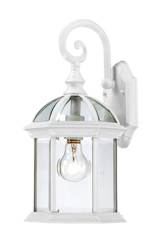 Nuvo Lighting 60/4964 Boxwood Single-Light Wall Lantern with Clear