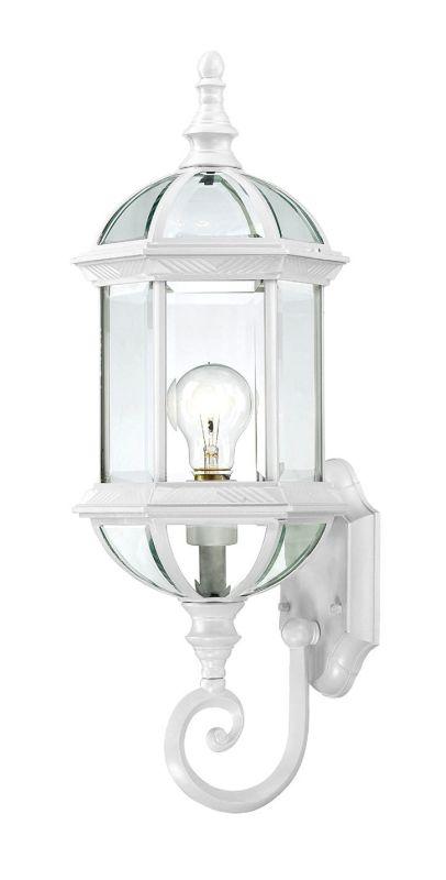 Nuvo Lighting 60/4971 Boxwood Single-Light Wall Lantern with Clear