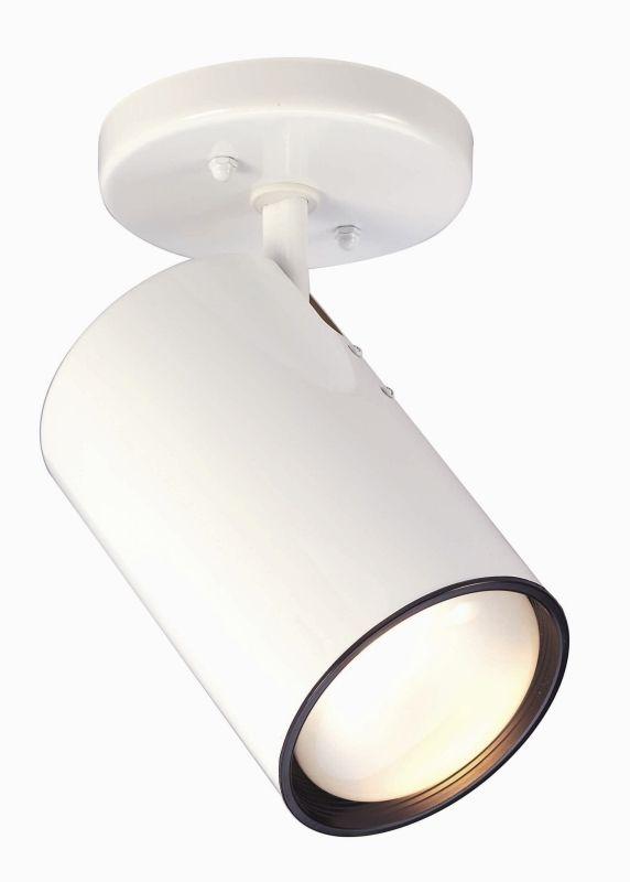 Nuvo Lighting 76/418 1 Light Semi-Flush Indoor Ceiling Fixture - 14