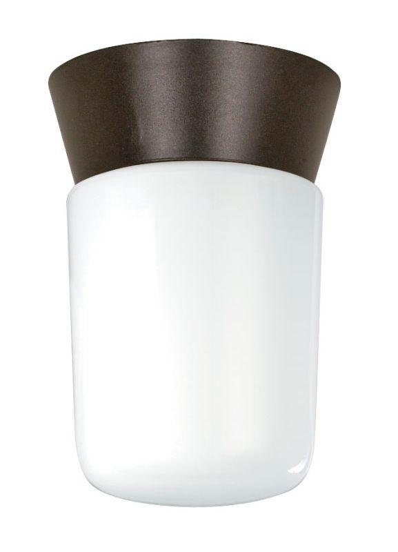 Nuvo Lighting 77/156 1 Light Flush Mount Outdoor Ceiling Fixture -