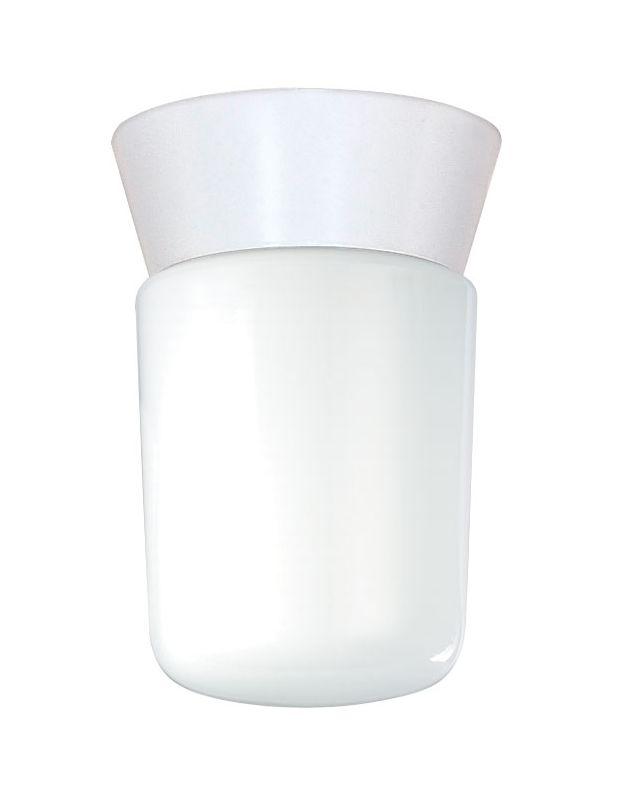 Nuvo Lighting 77/533 1 Light Flush Mount Outdoor Ceiling Fixture -