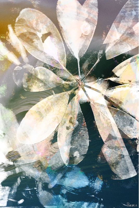 Parvez Taj Blue Water Art Print on Premium Canvas 24 x 16 Home Decor