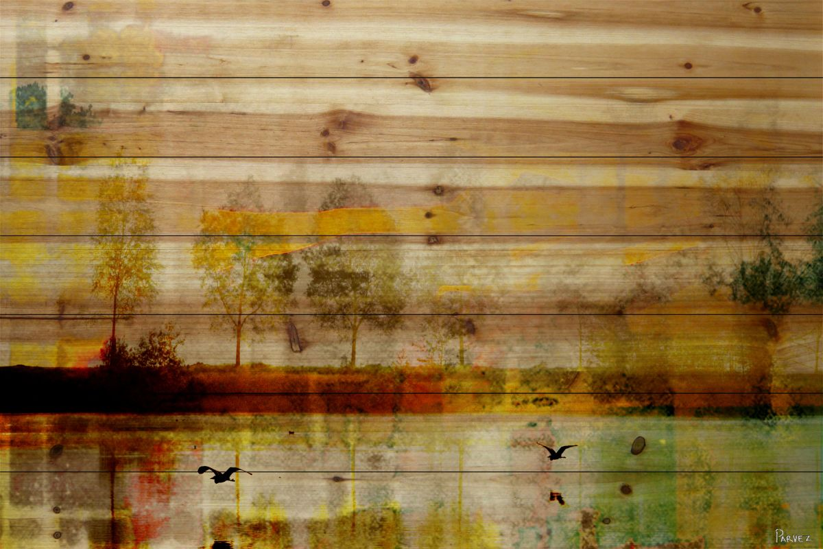 Parvez Taj Orr Lake - Pine Art Print on Natural Pine Wood 30 x 45 Home