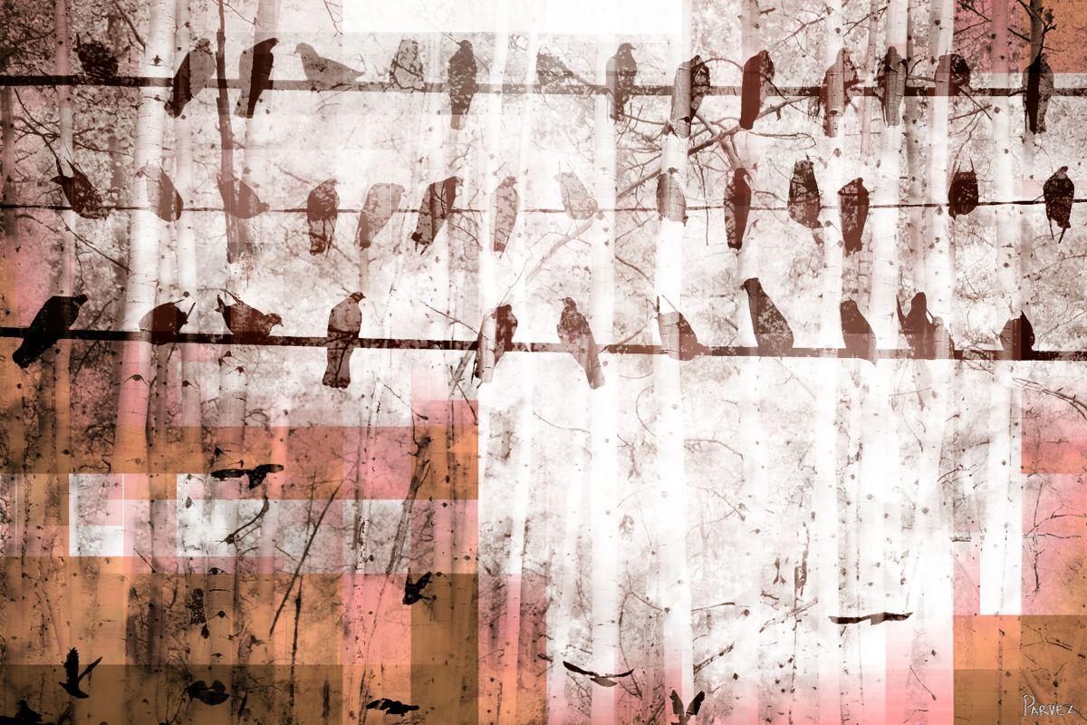 Parvez Taj Birds Chillin Art Print on Premium Canvas 12 x 18 Home Sale $66.03 ITEM: bci2682370 ID#:F10-3123-C-18 UPC: 799456955841 :
