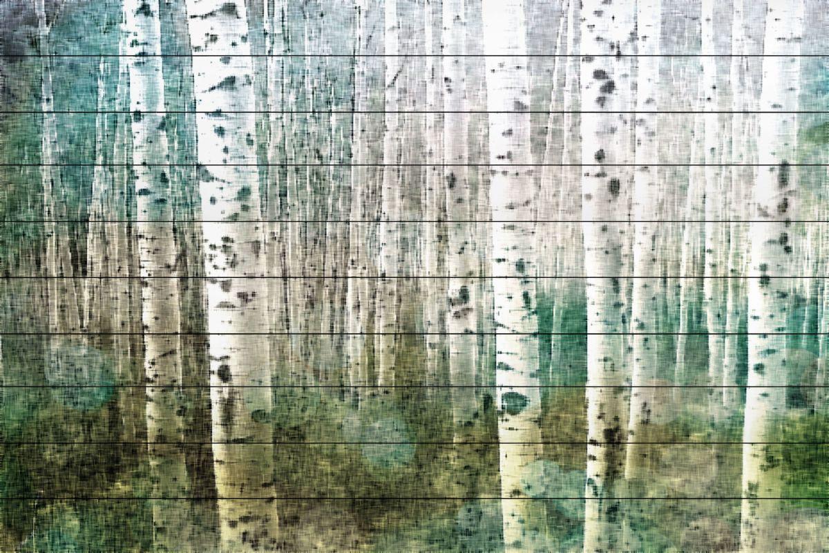 Parvez Taj Aspen 2 Art Print on White Pine Wood 30 x 45 Home Decor Sale $275.03 ITEM: bci2685511 ID#:F10-3132-WW-45 UPC: 701160400234 :
