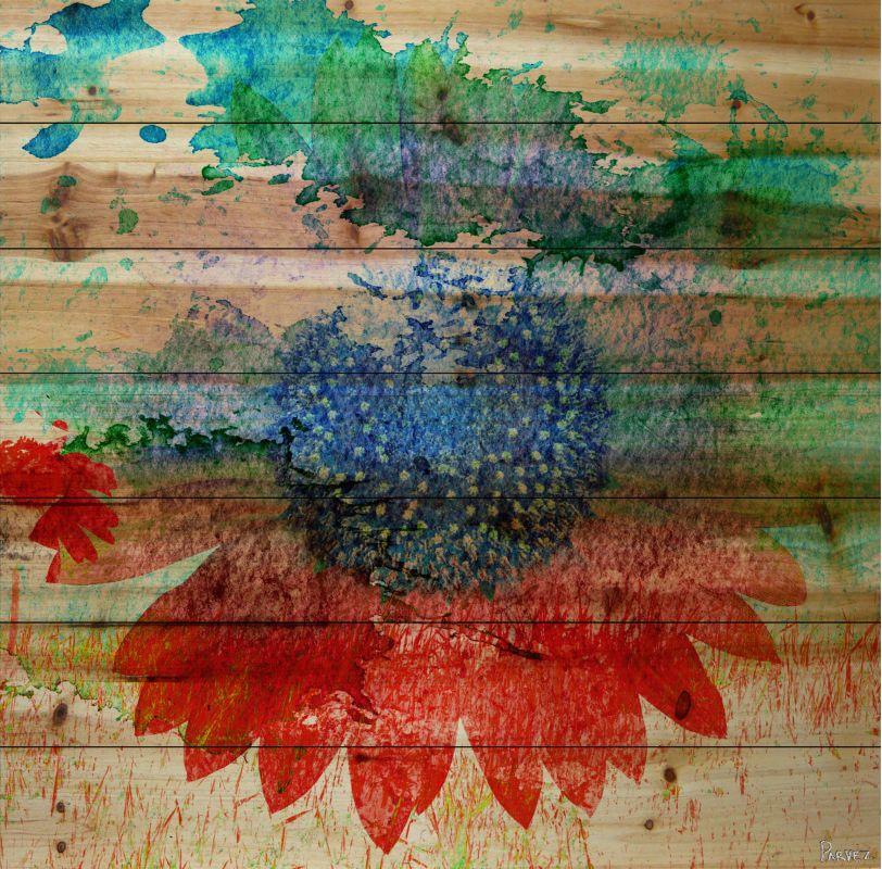 Parvez Taj Hot - Pine Wood Art Print on Natural Pine Wood 24 x 24 Home