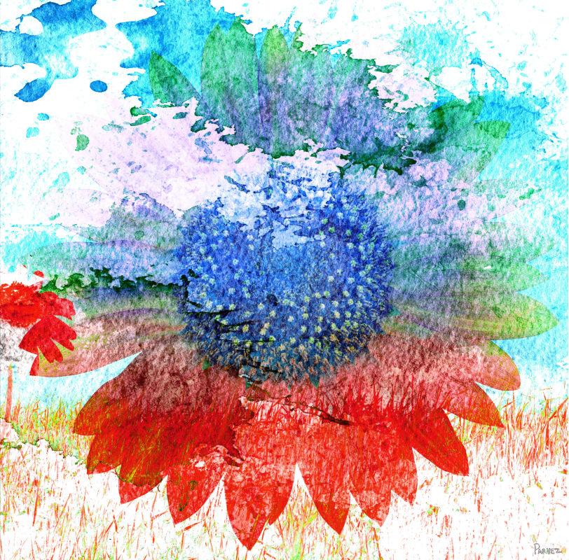 Parvez Taj Hot Art Print on Premium Canvas 32 x 32 Home Decor Canvas