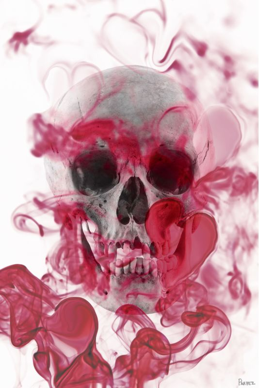 Parvez Taj Skull 2 Art Print on Premium Canvas 24 x 16 Home Decor Sale $70.78 ITEM: bci2682616 ID#:G28-22-C-24 UPC: 700064367315 :