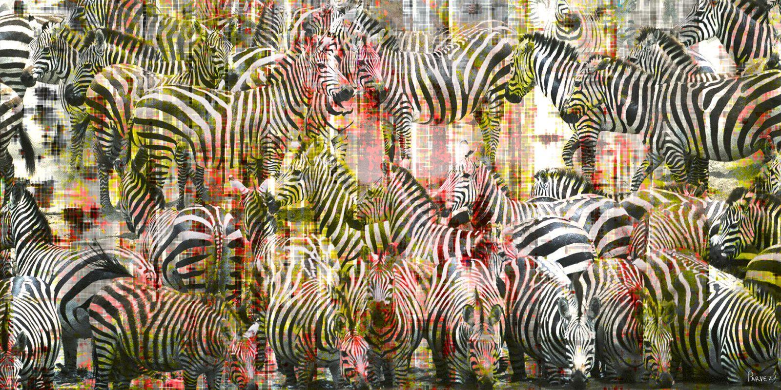Parvez Taj Zebras Art Print on Premium Canvas 12 x 24 Home Decor Sale $71.23 ITEM: bci2686798 ID#:G47-27-C-24 UPC: 700064368251 :