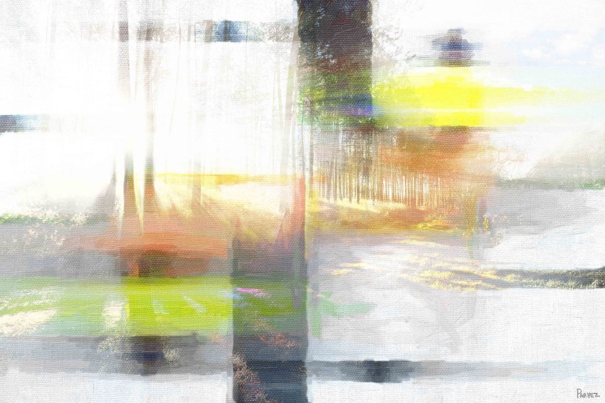Parvez Taj The Light - Canvas Art Print on Premium Canvas 30 x 45 Home