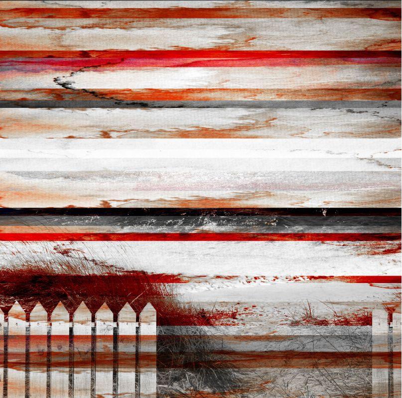 Parvez Taj Picket Fence Print on Canvas Art Print on Premium Canvas 48