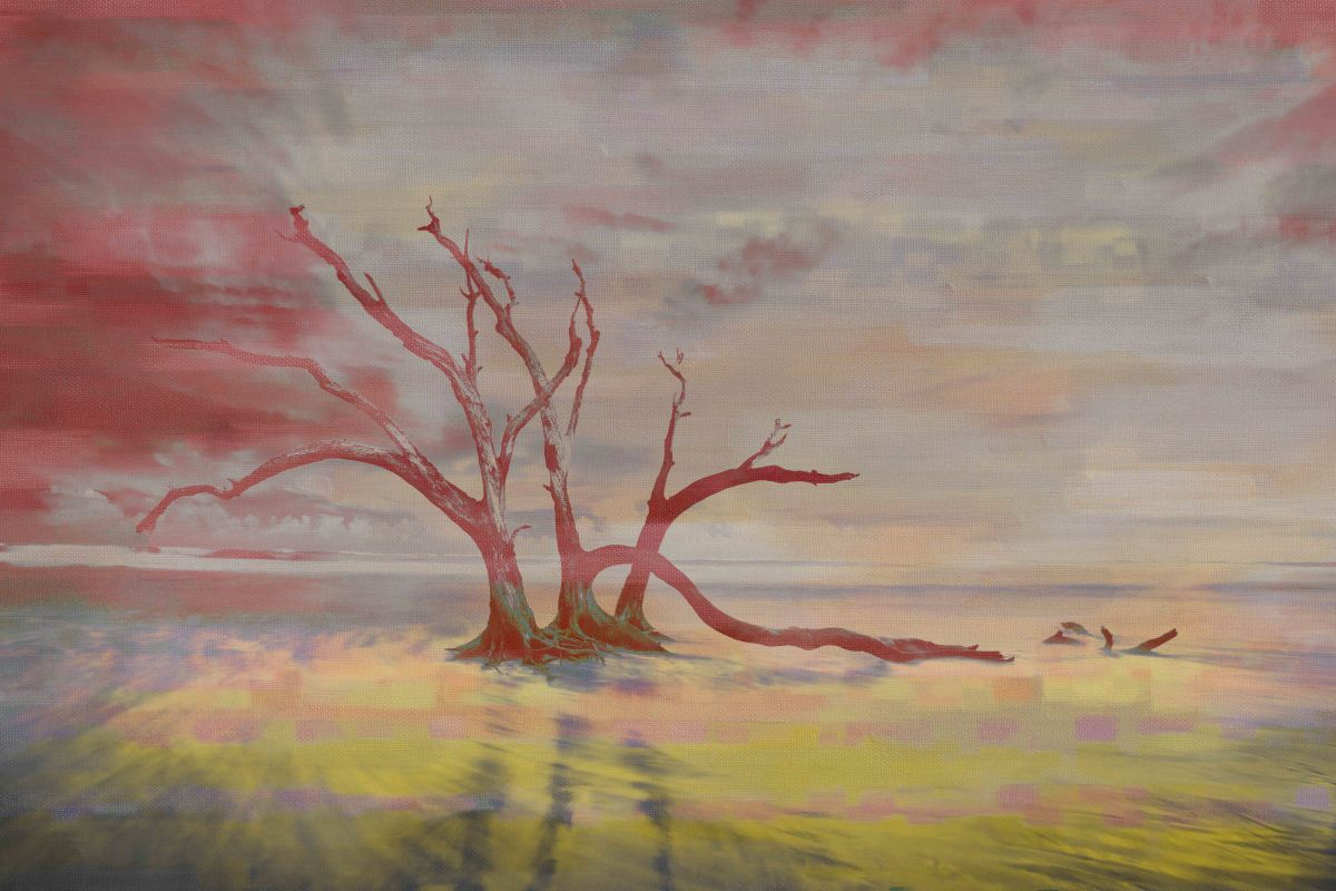 Parvez Taj Isolation Art Print on Premium Canvas 30 x 45 Home Decor Sale $185.16 ITEM: bci2686044 ID#:PTNOV-135-C-45 UPC: 708191045687 :