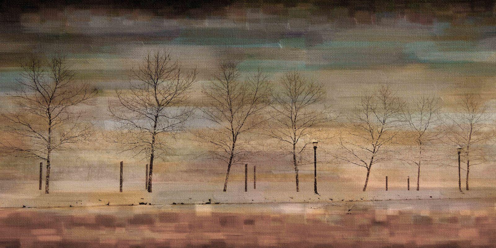 Parvez Taj The Woods Art Print on Premium Canvas 18 x 36 Home Decor Sale $115.00 ITEM: bci2686659 ID#:PTNOV-142-C-36 UPC: 708191045816 :