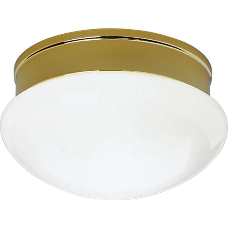 """Progress Lighting P3410 Fitter 2 Light 10"""" Wide Flush Mount Ceiling"""