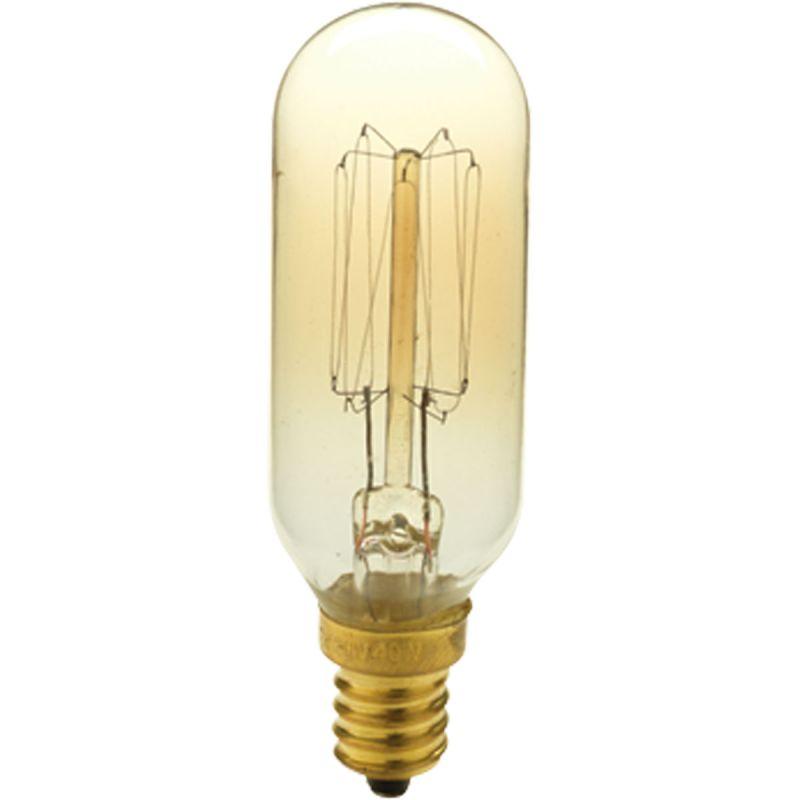 Progress Lighting P7826 40W E12 Candelabra Base T8 Shape Vintage