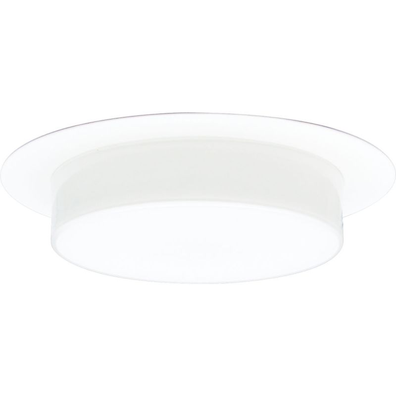 "Progress Lighting P8007 6"" Shower Trim with Opal Glass for A19 or"