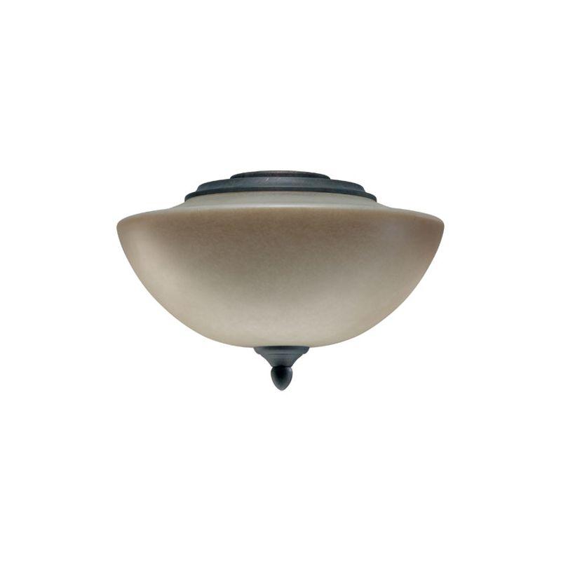 Quorum International 2386 Salon 2 Light Fan Light Kit with Glass Bowl
