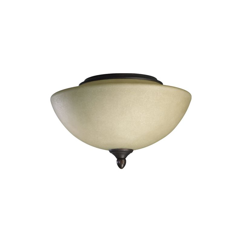 Quorum International 2388 2 Light Bowl Shade Fan Light Kit from the