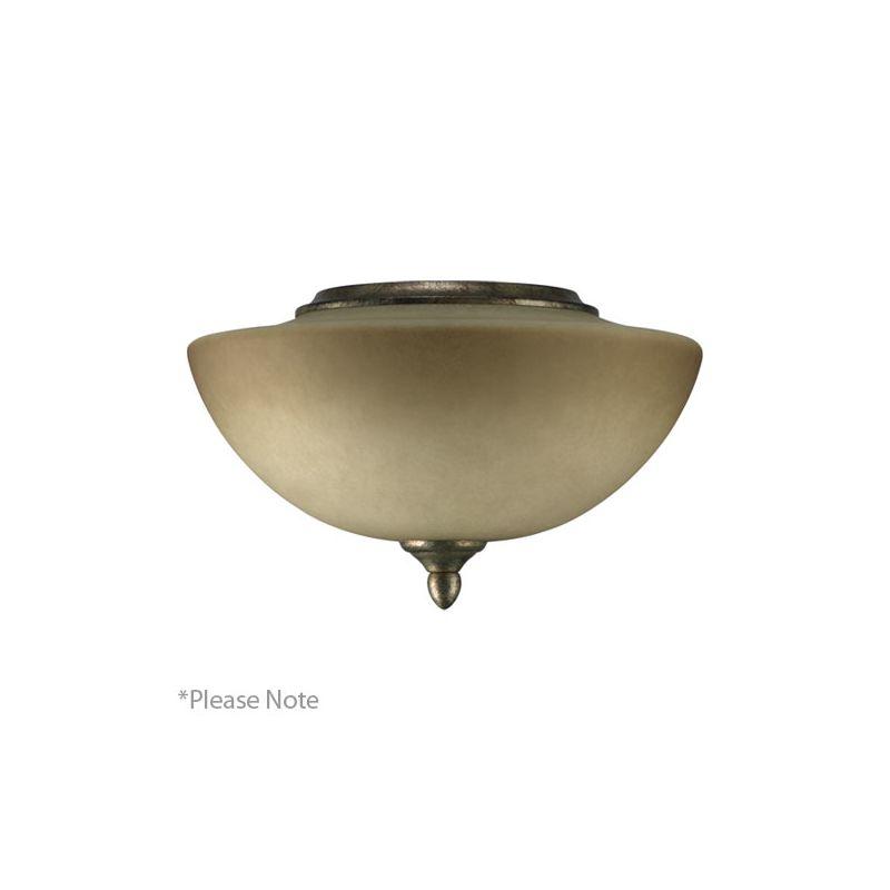 Quorum International 2386-1 Salon 2 Bulb Fan Light Kit Corsican Gold