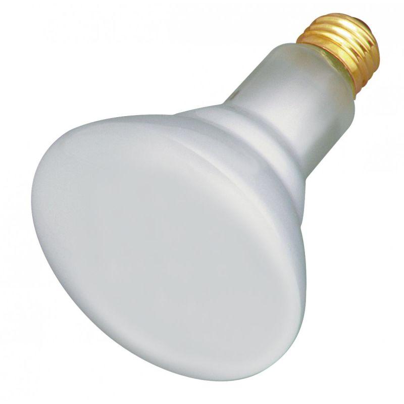 Satco Lighting S4887 65 Watt Dimmable BR30 Shaped Medium (E26) Base