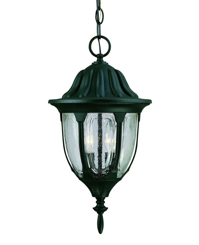 Savoy House 5-1502 2 Light Outdoor Pendant from the Tudor Collection Sale $140.00 ITEM: bci262959 ID#:5-1502-BK UPC: 822920068584 :
