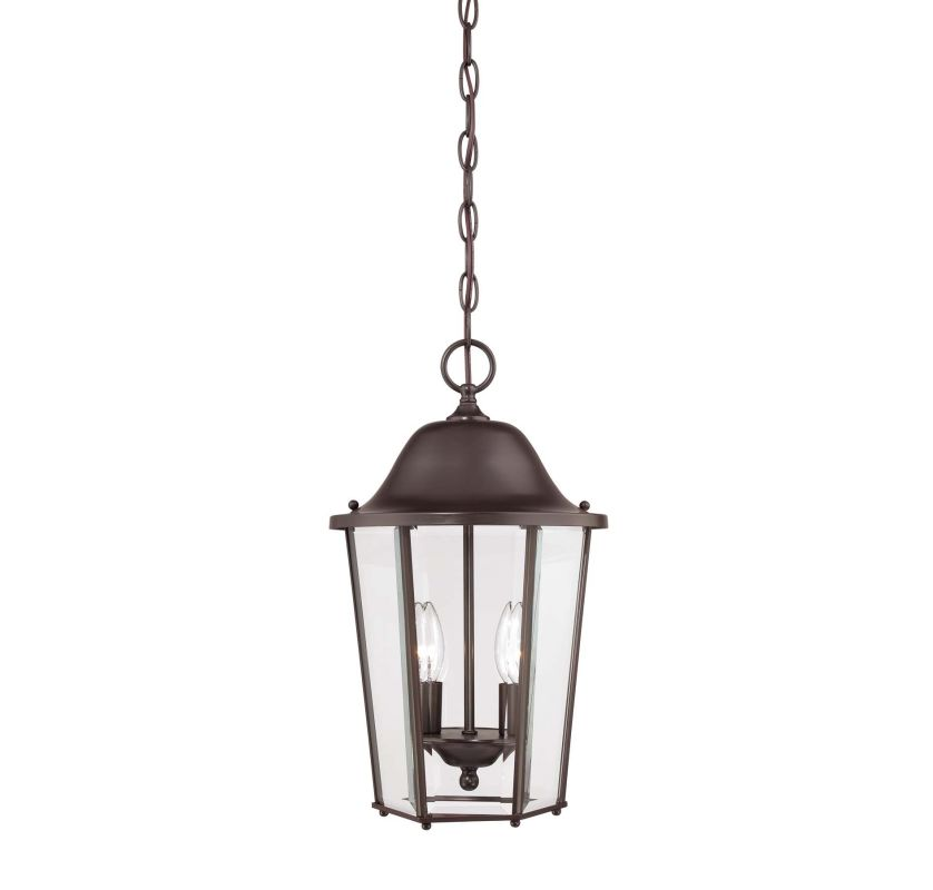 Savoy House 5-6210 Truscott 2 Light Outdoor Pendant Black Outdoor