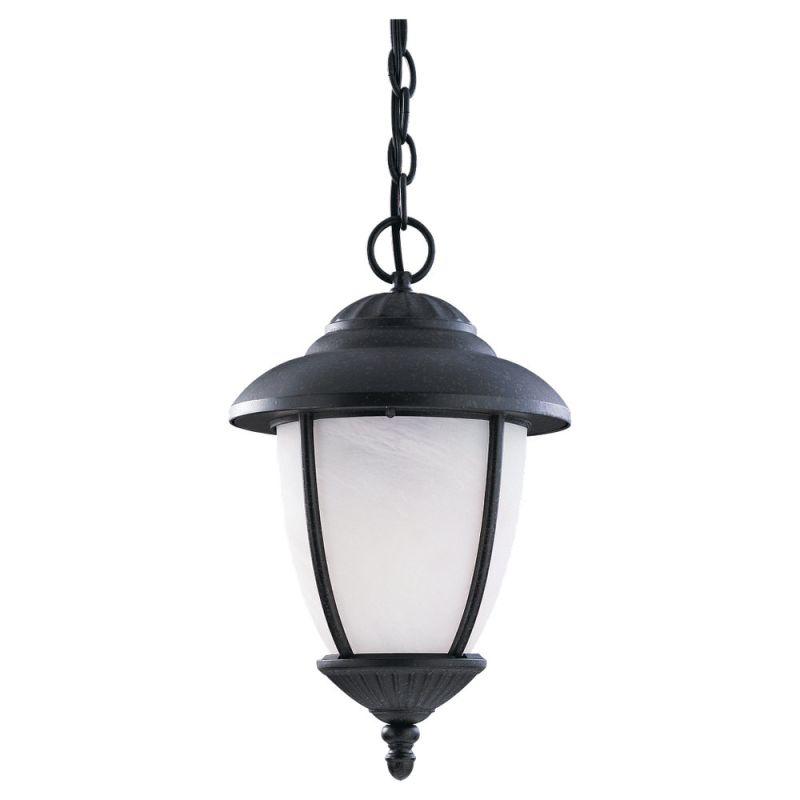 Sea Gull Lighting 60048 Yorktown 1 Light Outdoor Small Lantern Pendant