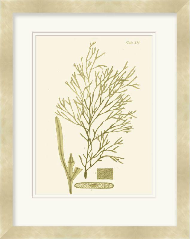 "Surya LJ4009 32"" x 40"" Dramatic Seaweed II Giclee Print Yellow Home"