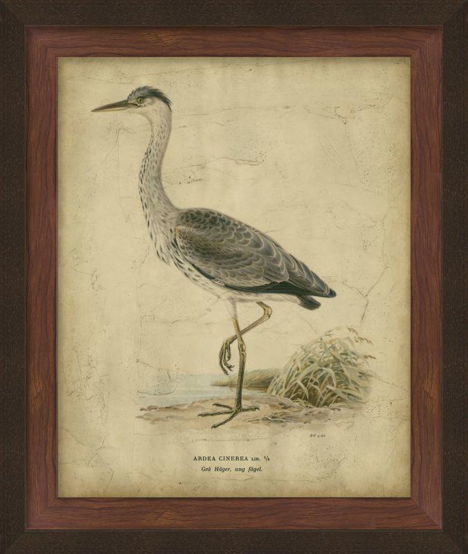 """Surya LJ4120 27"""" x 33"""" Embellished Vintage Heron II Giclee Print Brown"""