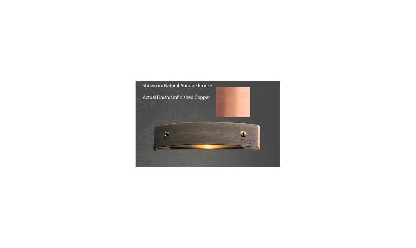 Troy Landscape R-P155C 12v Single Light 10 Watt Copper Material Micro