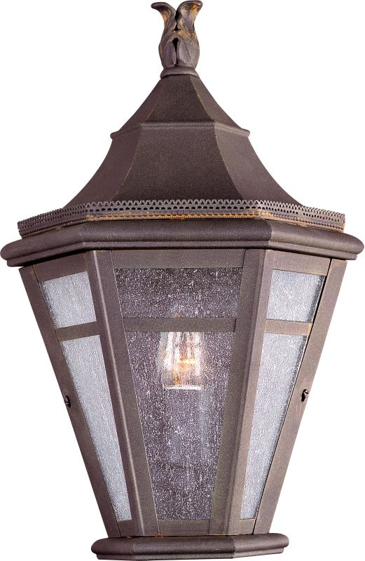 Troy Lighting B1278 Morgan Hill 1 Light Outdoor Wall Sconce with Seedy