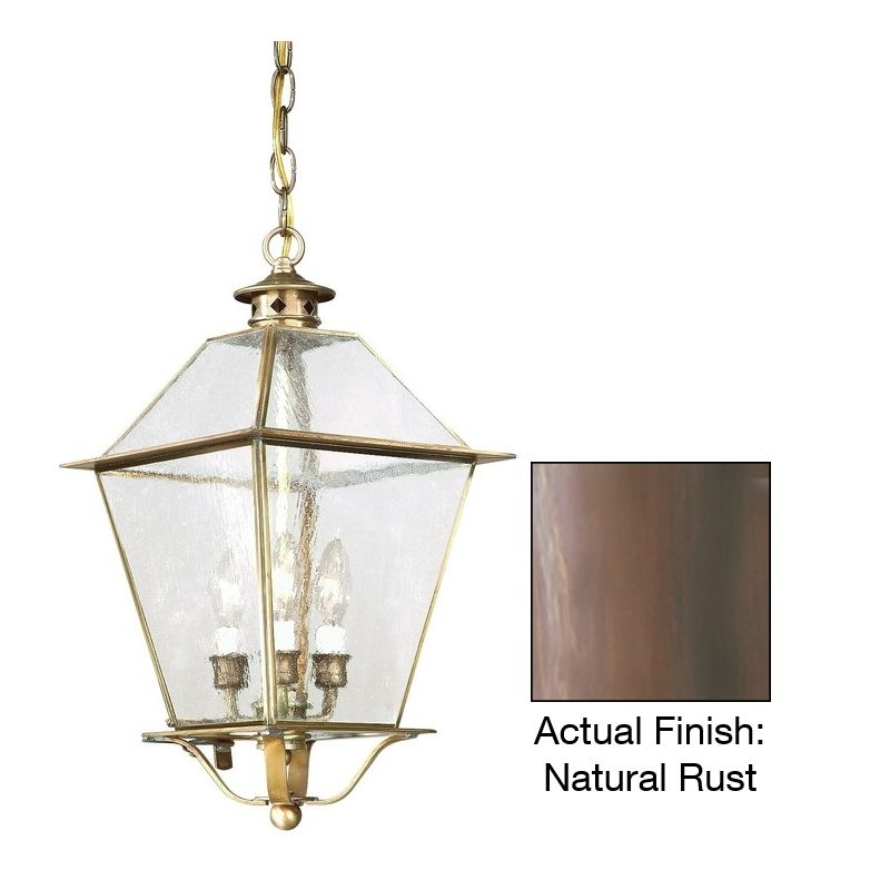 "Troy Lighting F8956 Montgomery 3 Light 21"" Outdoor Lantern Pendant"