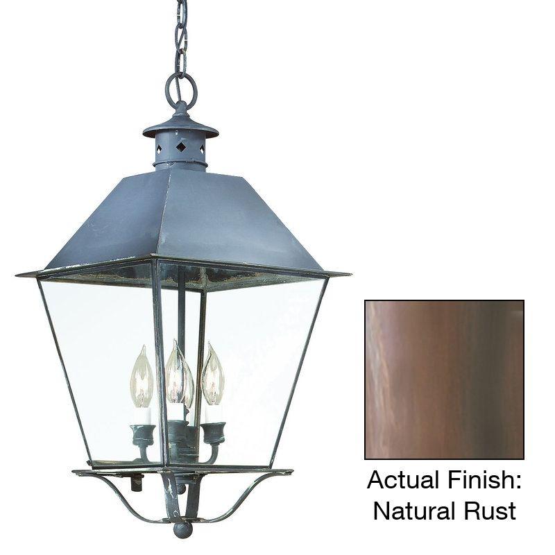 Troy Lighting F9136 Montgomery 3 Light Outdoor Lantern Pendant Natural