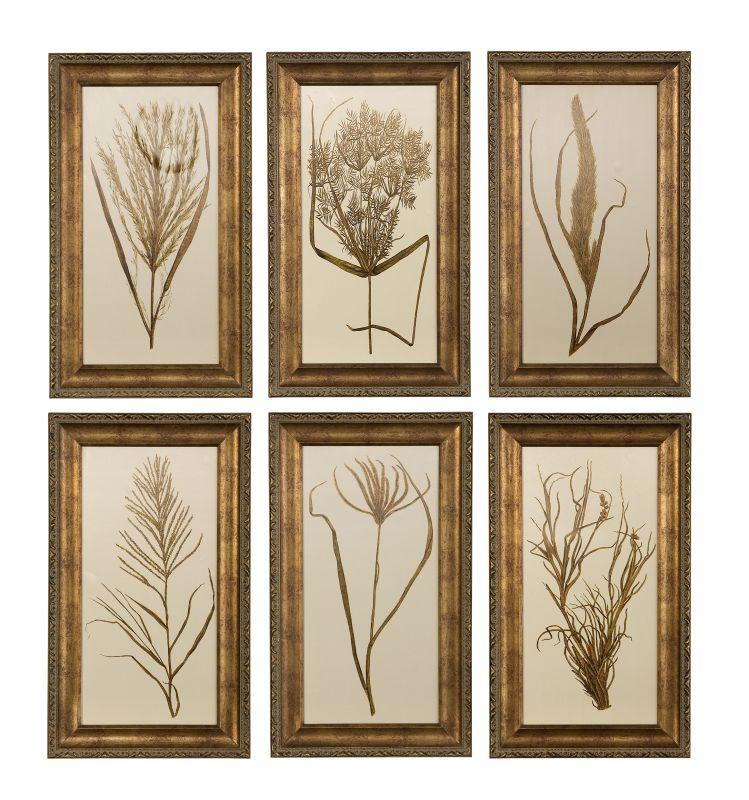 Uttermost 41151 Wheat Grass I II III IV V & VI Set of 6 Framed