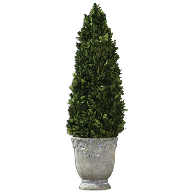 Uttermost 60111 Boxwood Cone Ceramic Topiary with Natural Foliage