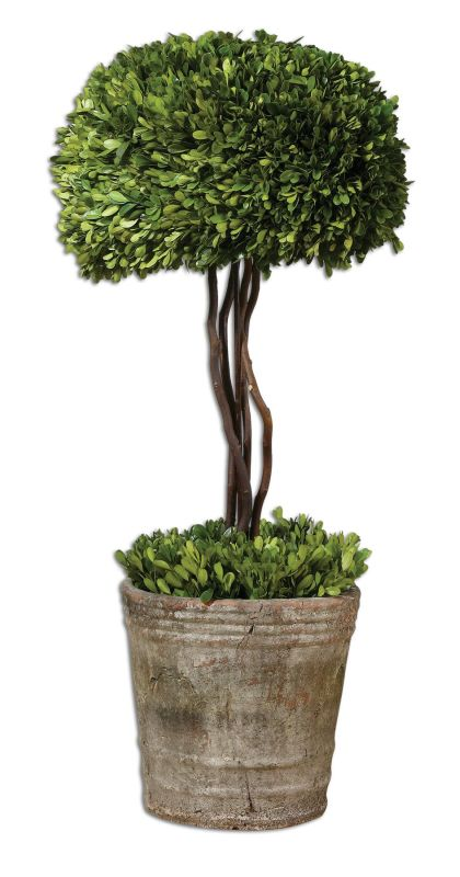 Uttermost 60095 Preserved Boxwood Tree Topiary Green / Mossy Stone