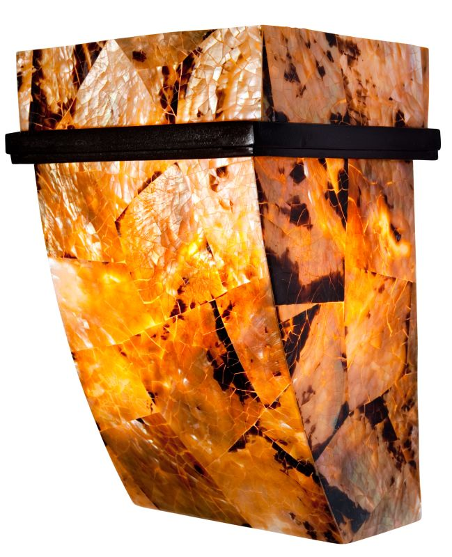 Varaluz 178K01 Wall Sconce Wall Sconce from the Big  Collection