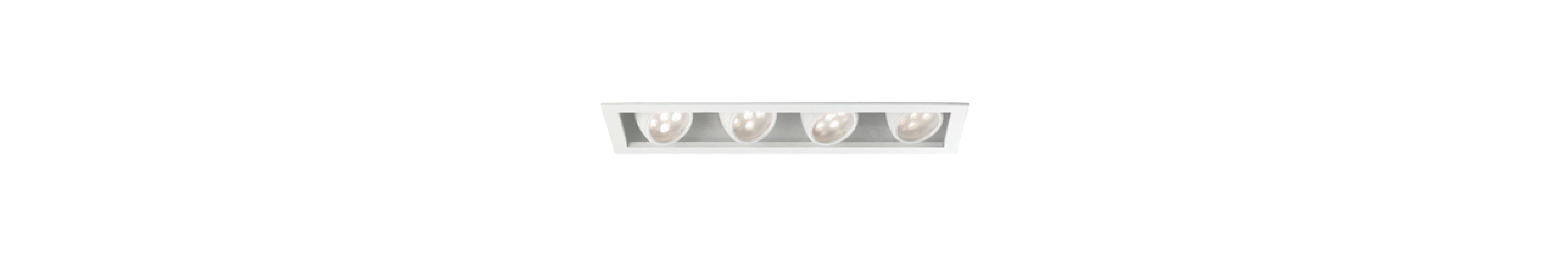 WAC Lighting MT-LED418F-WWHS Multiple Spot 3000K High Output LED