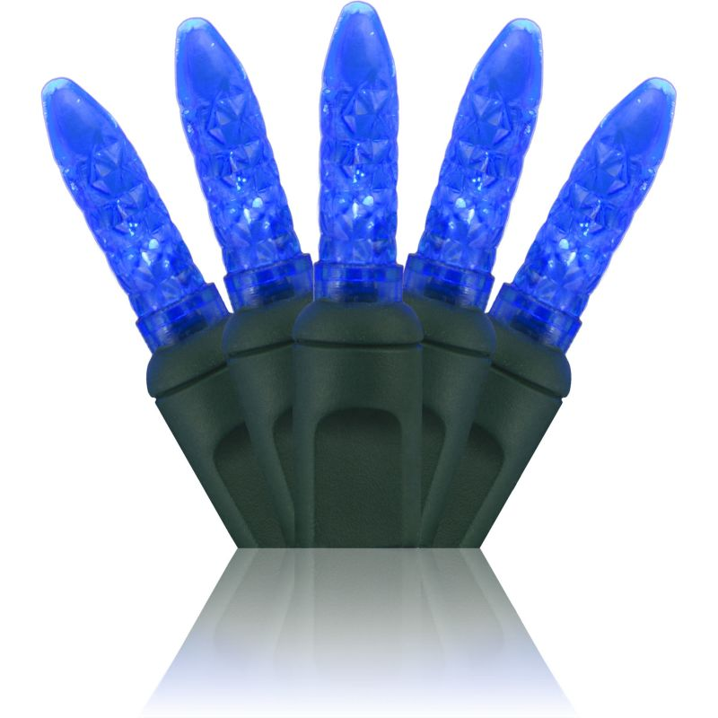 Wintergreen Lighting 69278 70 M5 LED Holiday Lights on Premium Green