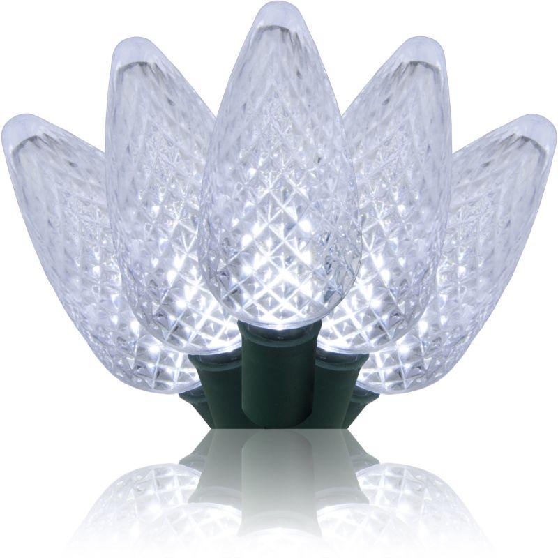 Wintergreen Lighting 69469 25 Bulb 17 Foot Long LED Decorative Holiday