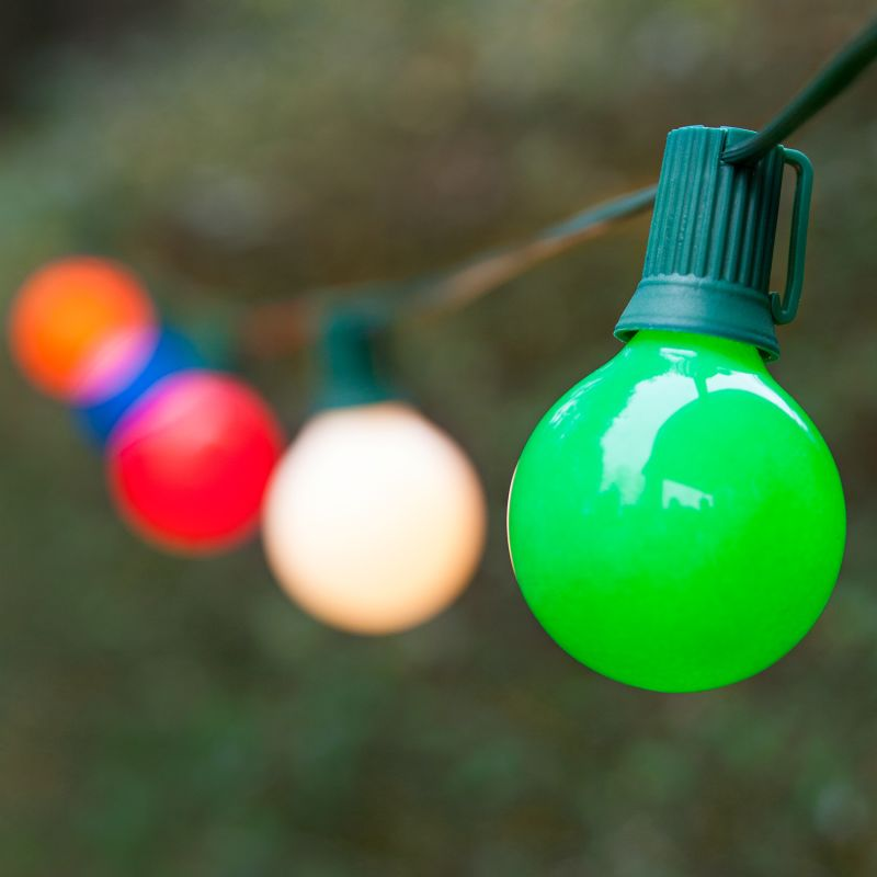 Wintergreen Lighting 70903 25 G50 7W Opaque Holiday Bulbs on Green