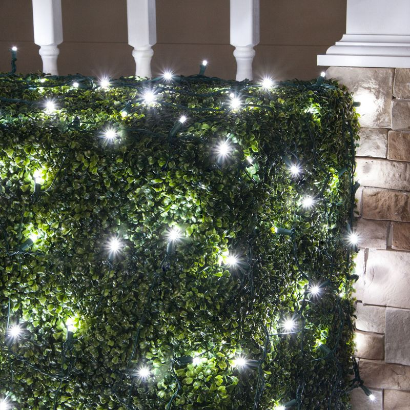 Wintergreen Lighting 72510 5mm 4' x 6' LED Net Holiday Lights with 100