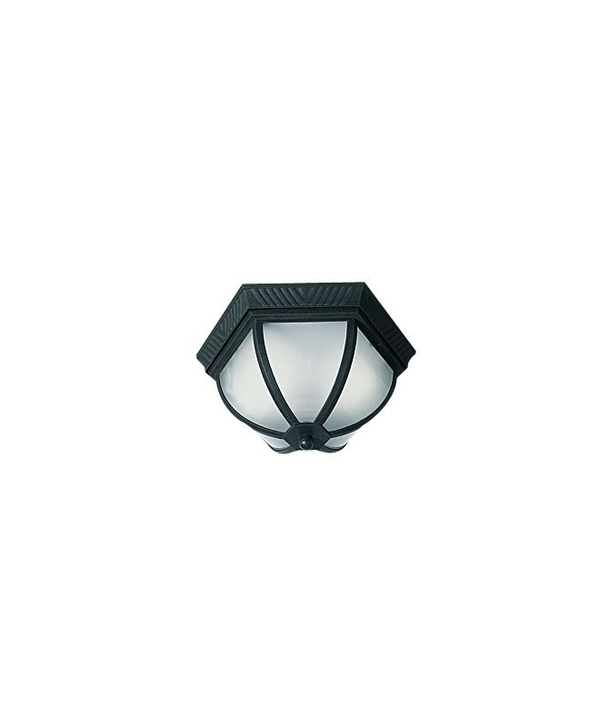 Woodbridge Lighting 61038WL-BKP 2 Light Outdoor Ceiling Fixture with Sale $77.70 ITEM: bci1978862 ID#:61038WL-BKP :